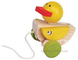 EverEarth Pull Along Duck EE32587