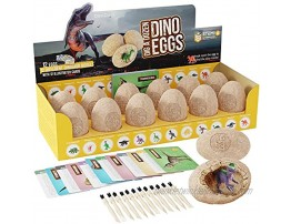 Dig a Dozen Dino Egg Dig Kit Easter Egg Dinosaur Toys for Kids Dig up 12 Eggs & Discover Surprise Dinosaurs. Science STEM Activities Educational Gifts for Boys & Girls Age 3-5 5-7 8-12 Year Old