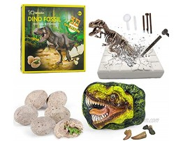 Dinosaur Fossil Digging Kit for kids Dig It Up! Dinosaur Eggs Excavation Kit Jurassic Park Dino Fossil Dig Kit Great STEM Science Kit Gift for Paleontology and Archeology Enthusiasts of Any Age